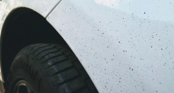 81ccf380f66 Mis kahju teeb pigi autole ja kuidas seda valutult eemaldada?